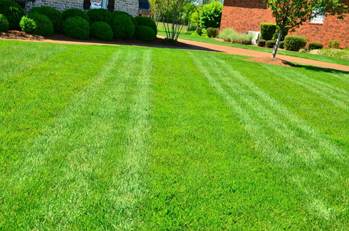 lawn mowing quad cities & henry county
